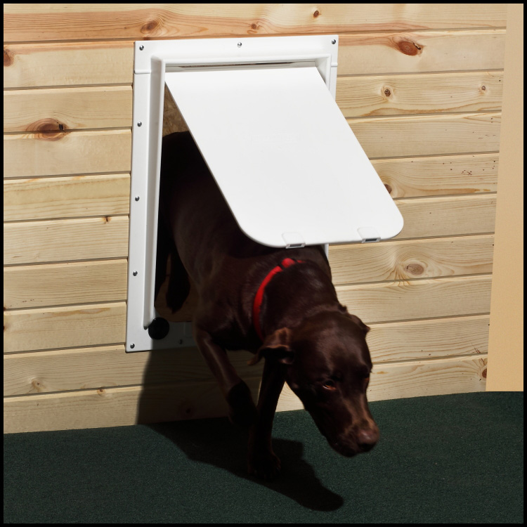 Pet Door Construction - Door Services Hewitt, Wisconsin
